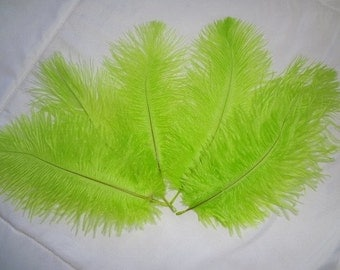 Bright Lime Ostrich Drab Feathers Wholeasale Bulk Lot Costume Craft Design Supply Hair Hat