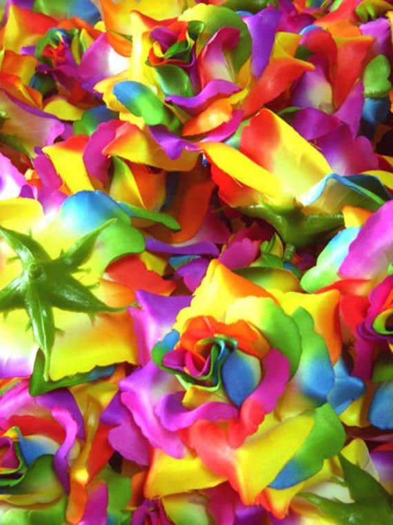 12 Rainbow Roses Artificial Silk Flower Heads - 3.75 inches - Wholesale Lot - for Wedding Work, Make Hair clips, headbands, hats