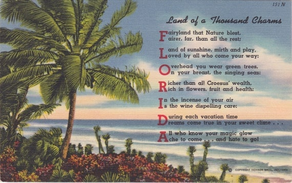 FLORIDA Land of a Thousand Charms, PALM Trees and FLOWERS, Used and Stamped, 1950s Vintage Postcard