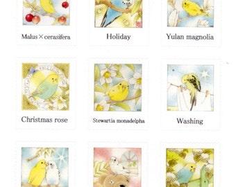 Illustrator atelier emi   Budgie / Budgerigar / Parakeet Stickers (Emi-3)