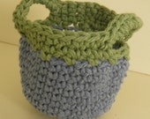 Crocheted Apple Cozy blue and green
