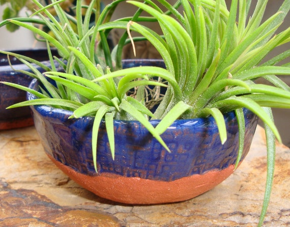 Cobalt Over Terracotta Pinched Bowl with Crosses, Tillandsia, Condiments, Trinkets, Incense Bowl, Whatever, hiddenfirepottery