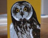 Owl Blank Greeting Card
