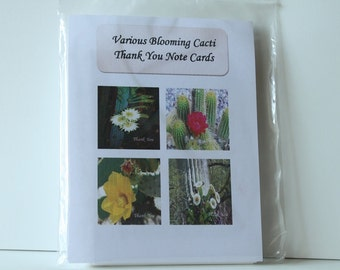 Blooming Cacti Thank You Note Cards