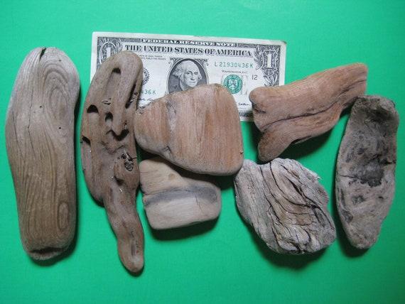 Driftwood--Beach Supplies--7 Pieces of Chunky Drift Wood--Lot FE18