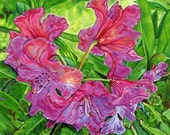 Giclee Canvas PRINT - Pink Rhodo - 8x10  - Signed Limited Edition