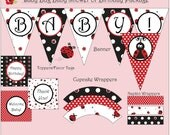 Lady Bug Party Package - Birthday or Baby Shower