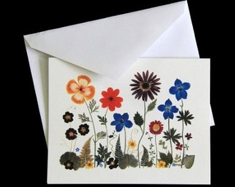Pressed Flower Cards - set of 6 notecards - All occasion cards #004