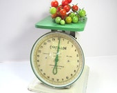 Vintage Chatillon Household Scale Green and White Mint Condition, Farmhouse Kitchen