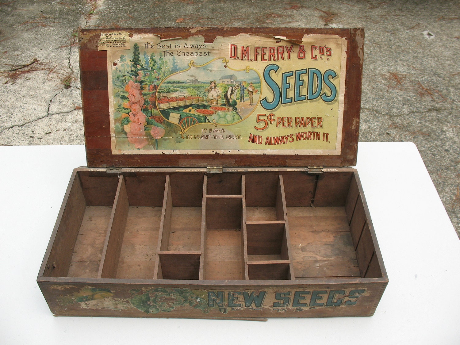 D.M. Ferry Antique Seed Box With Original Label & Partitions