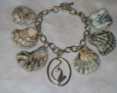 Early Christmas Sale. Kitten paw sea shell bracelet, natural shells,found on the gulf coast, unique, one of a kind.