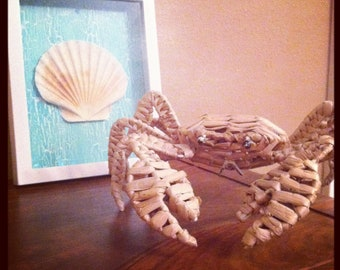 Seashell Shadowbox