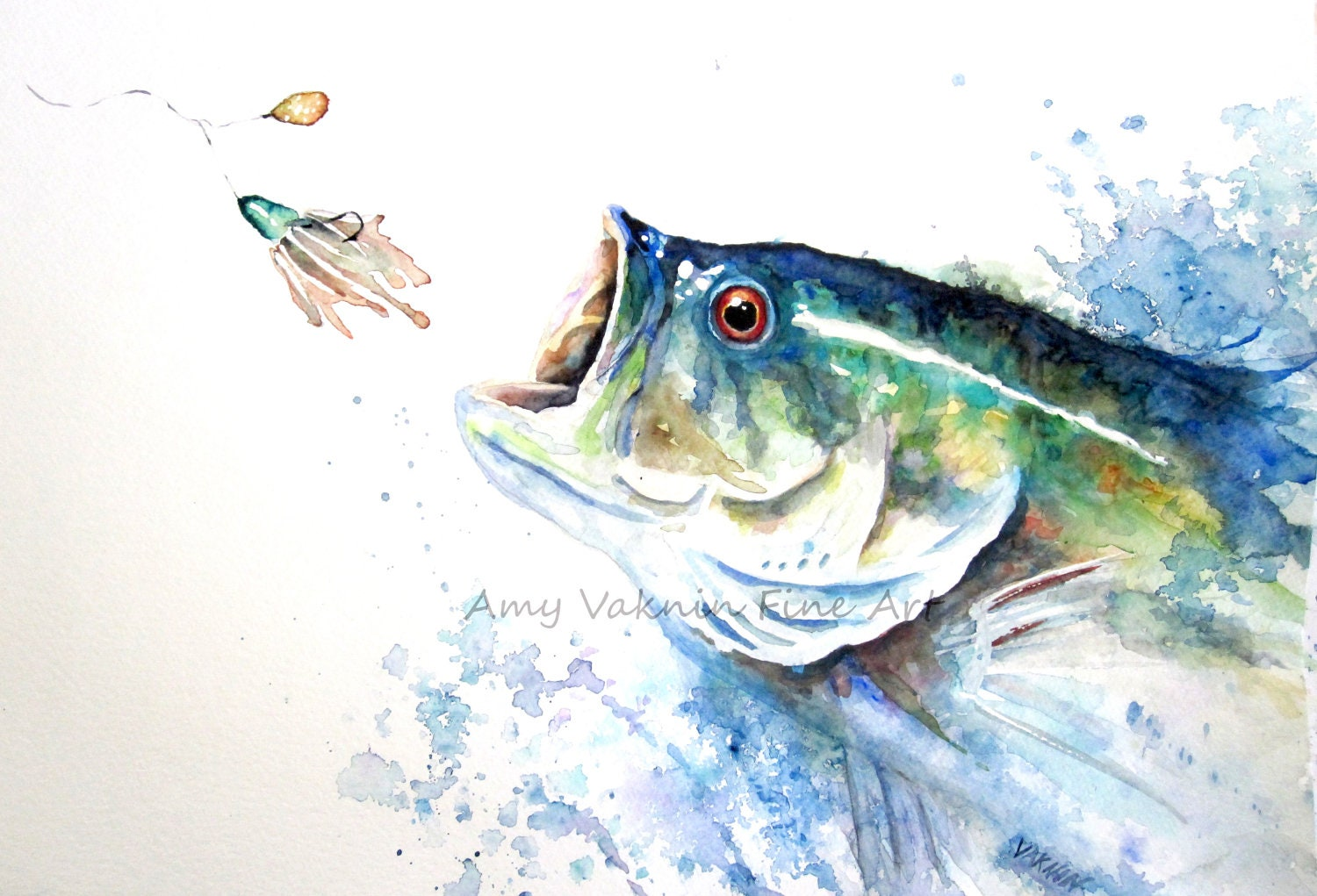 Large Mouth Bass Fish Print Sport Fish Print
