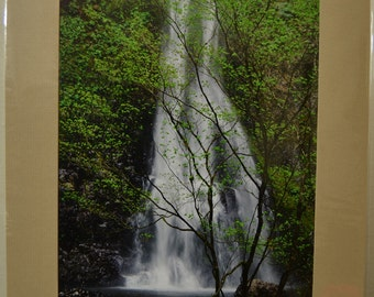 SALE - 8.5x11 prematted print - photograph - fine art - home decor - Double Falls - Silver Falls State Park, OR