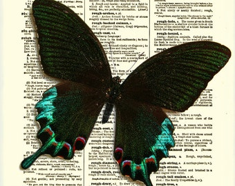 Peacock Swallowtail Butterfly Print, Butterfly Decoration, Dictionary Art Print, Mixed Media Digital Collage, Wall Decor, Wall Art