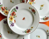 Vintage Flower China Plates Thuny TK