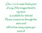 One 11x14 Print