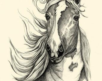 Quarter Horse Head Drawing Realistic Horse...