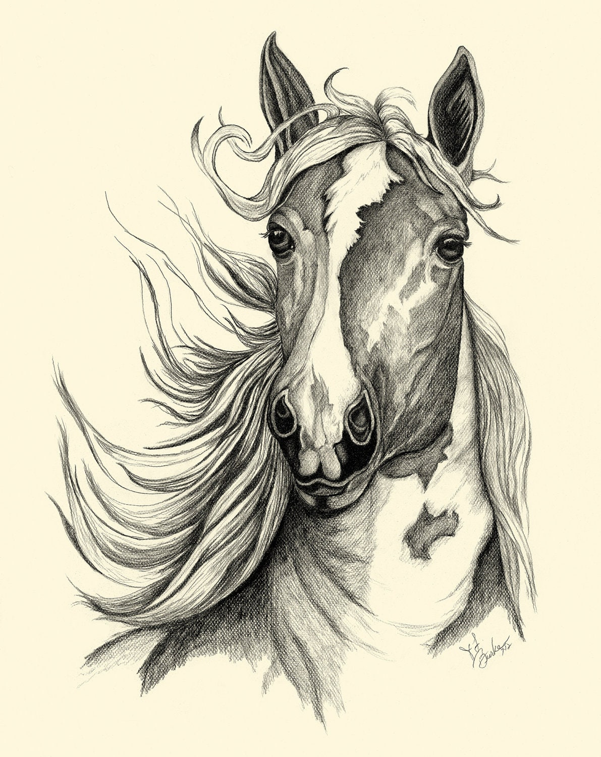 Learn How To Draw Paintings Portraits: HOW TO DRAW A HORSE ...  |Horse Art Drawings