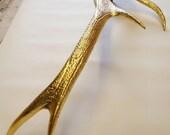 Gold antler