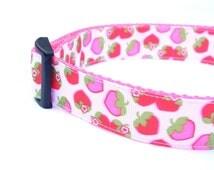 Strawberries & Cream 1 Inch Width Dog Collar