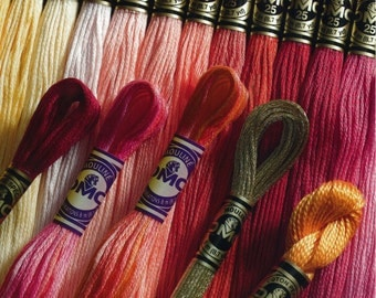 Dmc Embroidery Floss 10 skeins - choose your colour