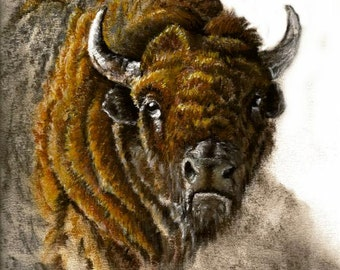 Buffalo Pastel Painting, Framed