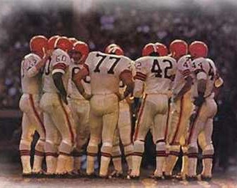 Cleveland Browns Rare Art Print Gorgeous