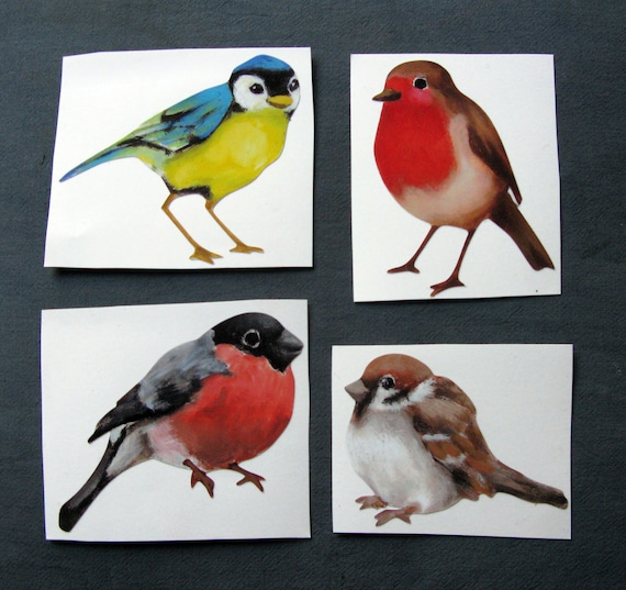 Small British Bird Decals Unique Wall Stickers From Lola