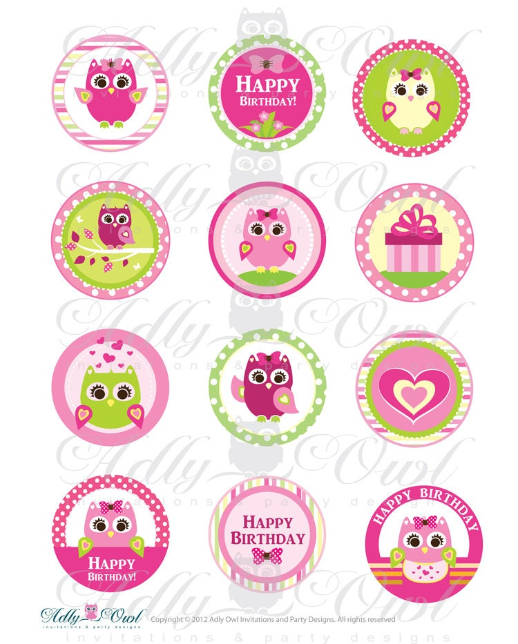 Pink Girl Owl Birthday Cupcake Toppers or Favor Tags