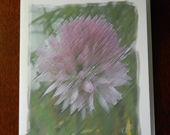 Chive Flower Notecard - Blank Inside