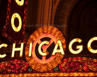 Chicago Theatre Marquee Photography Night