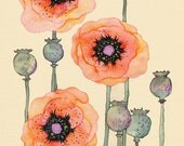 "Shirley Poppies 12"" x 16"""