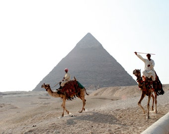 """Travel Photography """"Camels and Pyramids, Egypt"""" Print"""