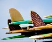 Tail Fins 8 x10 Fine Art Photo