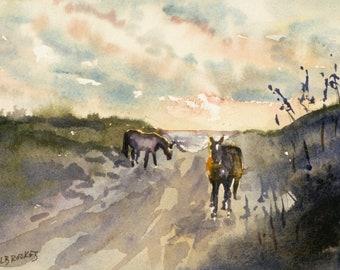 Beach Ponies in Early Morning  (Beach Ponies VII)