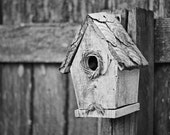 An empty little bird house hangs patiently on a fence, 8x10 black and white Fine Art print