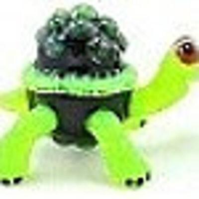 turtleglass