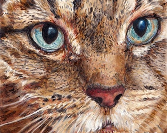 Custom Pet Portrait Tabby Cat - Cat Portrait - Cat Painting from your Photo - Portraits by NC