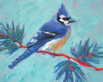 Blue Jay - Bird Art - Paper - Canvas - Wood Block