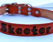 Leather dog collar with NEW LOWER Case FONT one inch width with id tag