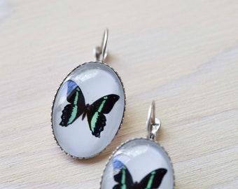 Butterfly Jewelry, Butterfly earrings, Woman gift, Under 25, Photo Jewelry, Nature Earrings, Butterfly art, Wildlife jewelry, Insect Jewelry