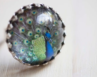 Peacock Ring, Nature Ring, Cocktail Ring, Peacock Jewelry - Antique silver toned glass dome ring comes gift wrapped for her