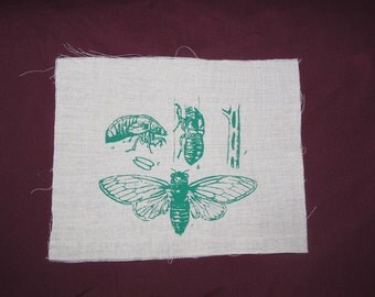 science patch, Cicada Life Cycle Patch - Green on Natural Beige White canvas - cicada patch, Insect, Bug Silkscreen Screenprint Image, fun