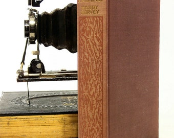 """Hervey, Harry """"Red Ending"""",1929, Rare First Edition Hardcover Fiction Chareston, S.C."""