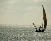 Dhow 4 - Travel Photography - Wall Décor - Nature Photography