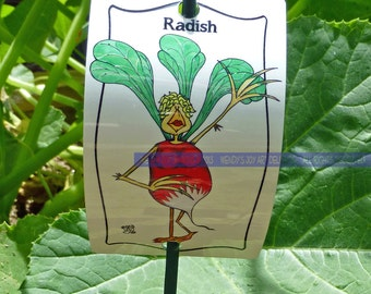 Vegetable Marker Radish for Gardens Decor Education Healthy Fun