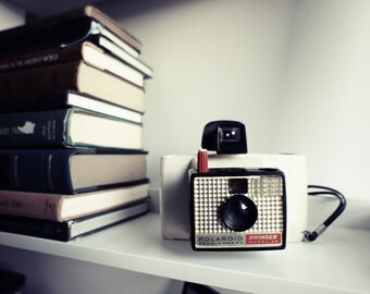 Polaroid Camera Model 20 Swinger  - Display