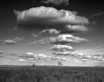 White Cloud formation over a Sawgrass Marsh in the Florida Everglades No. 0008 A Black and White Fine Art Nature Landscape Photograph