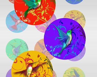 Hummingbirds Swirls Instant Download for Glass resin Pendants Round Jpeg 1 and 2 Inch 14 mm Images (D-8)